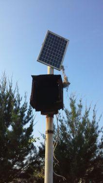 Solarpanelnya menjuntai :(